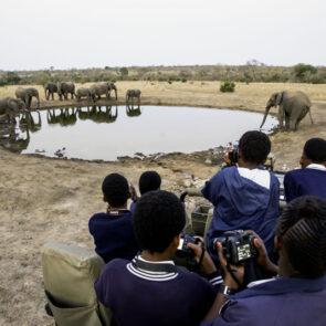 immagine con soggetti che scattano foto a elefanti che bevono da oasi del progetto GITZO LÈGENDE di Vitec Imaging Solutions